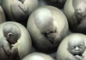 Embryo selectie